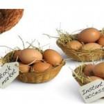Что такое диверсификация (в финансах)